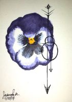 Pansy by AsaRawr