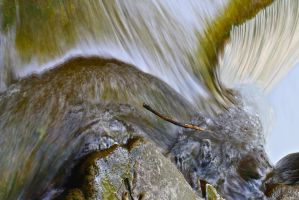 In the Eye of the Flow by organicvision
