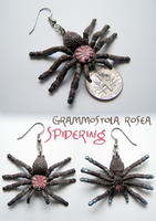 Spidering - G. rosea by RacieB