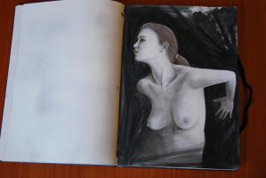 Sketchbook by anemesis5
