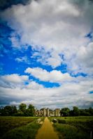 Cowdray Castle by pjgdesign