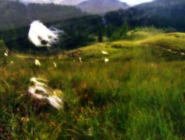 Fumaroles in the wind by SaralovesMichael