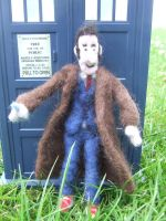 Needle felted - Dr who. by kez245