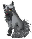 Ever thought of having Poochyena as your pet? ... by Freaky--Like--Vivi