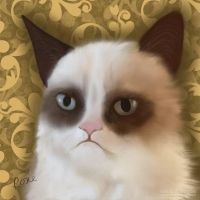 Grumpy Cat by rosanakooymans