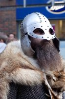 Vikings 2011 stock 12 by Random-Acts-Stock