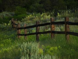fenceline by fotophi