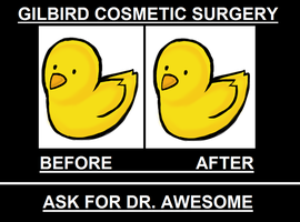 Gilbird - Cosmetic surgery by Christin-Cat-Bat