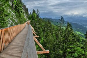 Over The Trees by Burtn