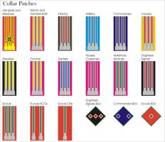 Imperial Guard New Collar Patches by Ienkoron