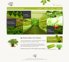 Hydroculture by Webdesignerps