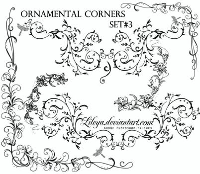 Ornamental Corners set 3 by Lileya