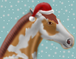 Christmas Pic One by HeartOfStoneRescue