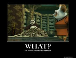 Kung Fu Panda Final Exams Demotivational by EmmyKirk14
