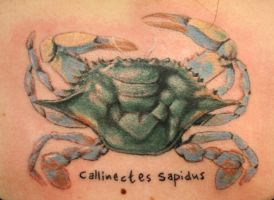 crab by tattooedone