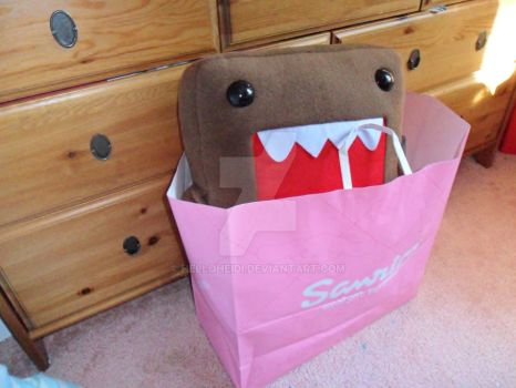 My Domo I bought by HelloHeidi