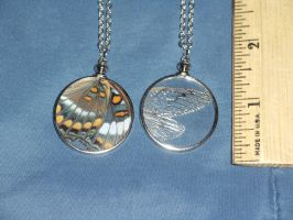 Glass Window Pendant, Butterfly and Cicada by Magelet