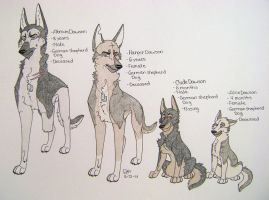 Ember's family -mini ref.- by Huskypawz