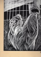 Scratchboard Chicken Final by tei-tenshi
