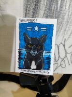 ACEO Plane to Cat - Skipper by amberchrome