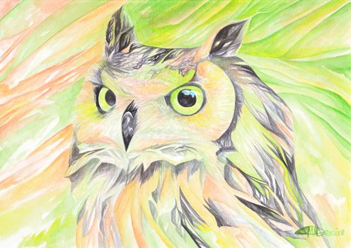 Bright Owl by snowmarite