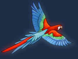Parrot finished by Hamdhan24