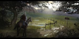 The Witcher by Enthing