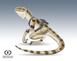 Reptilia Pogona by chris-illustrator