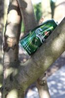 Beer in a tree? by Living-Life-Loud