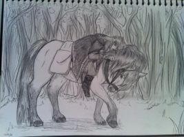 Kili and his pony .2 by wolfgal04