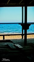 Staring Out to Sea by Maltese-Naturalist