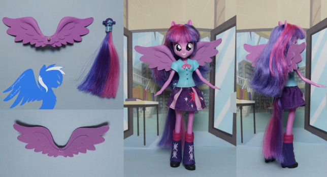 Twilight Sparkle's transformation pack by ShiveringCanvas