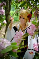 Vocaloid - Transient Flower by kitsunesqueak