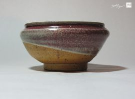 Half-Tone Bowl by ginger-roots