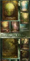 The Elven Wood by cosmosue