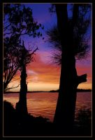Hastings River sunset 6 by wildplaces