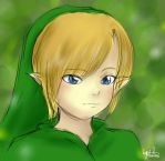 Young Link by EverlastingRainbow