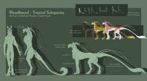 Bloodhound - Tropical Subspecies by BloodhoundOmega