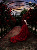 painted the roses red... by praetor-FEMI