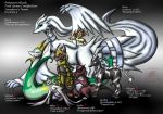 Pokemon Black Game clear team by Snowfyre