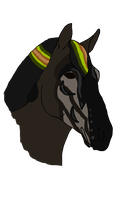 5764 - Chaos will Rein - Padro by UnknownRidersStable