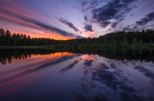 Reflection On Salmon Pond by Nitrok