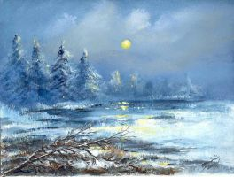 First snow 2 by mbart