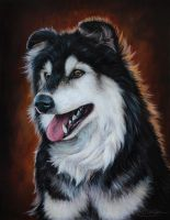 Dog Portrait Commission by LuxDani