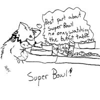 thoughts on the super bowl by Vulpes-Canis