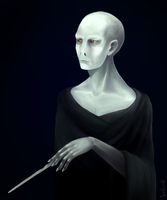 Lord Voldemort by YumikoUA