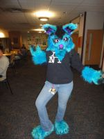 Furry - Tigercon 2012 by WolvesOfComedy