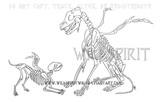 Father And Daughter Skeletal Winged Wolves by WildSpiritWolf