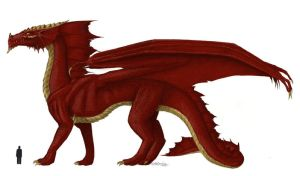 Red dragon of D'n'D by Alister-Murkerry