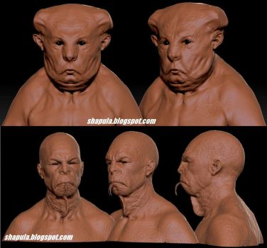 Zbrush clay render of previous sculpts #3 by Shapula